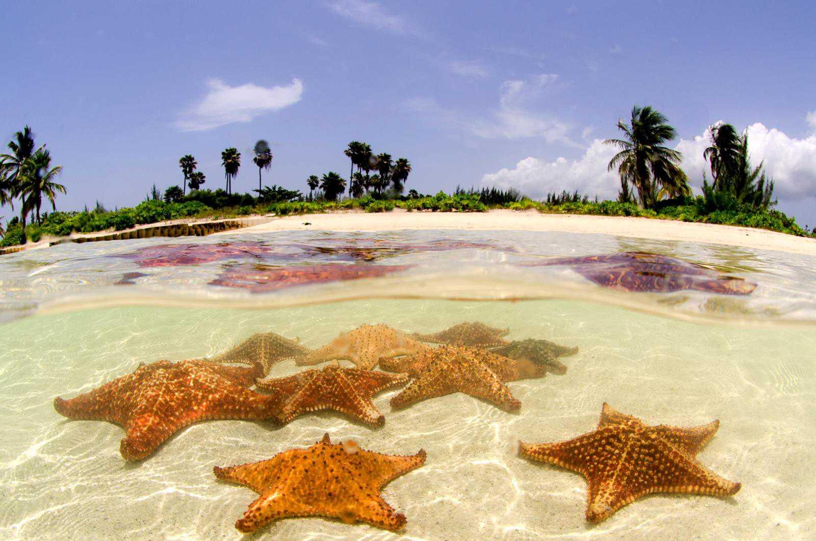 Cayman Islands Vacation Blog