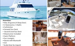 55′ LUXURY BAYLINER YACHT