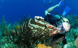 Litle Cayman Island