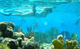 best snorkeling islands grand cayman