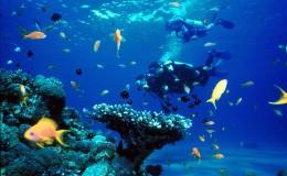 CaymansTourist Destinations