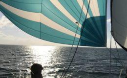 45′ Sailing Catamaran 6